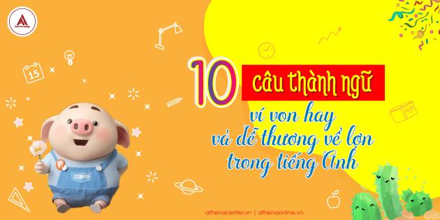 10 CÂU THÀNH NGỮ TIẾNG ANH VỀ LỢN CỰC DỄ THƯƠNG VÀ DÍ DỎM!